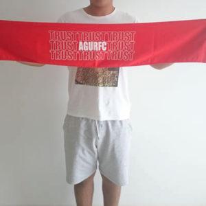 towel_3